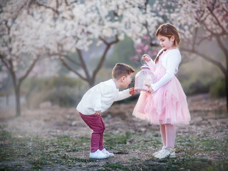 Fratello piccolo e sorella che giocano nel parco immagine stock libera da diritti