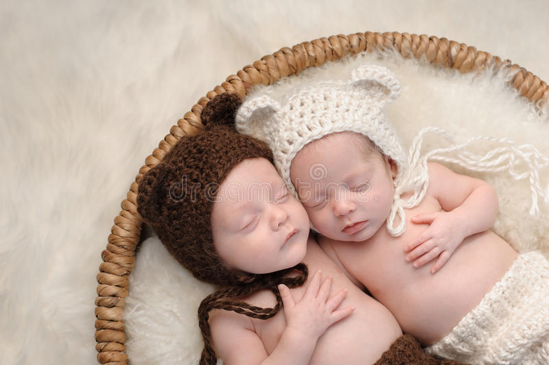 Fraternal Twin Baby Brother and Sister in Bear Hats. Two month old, boy and girl fraternal twin babies. They are sleeping together in a basket wearing royalty free stock image