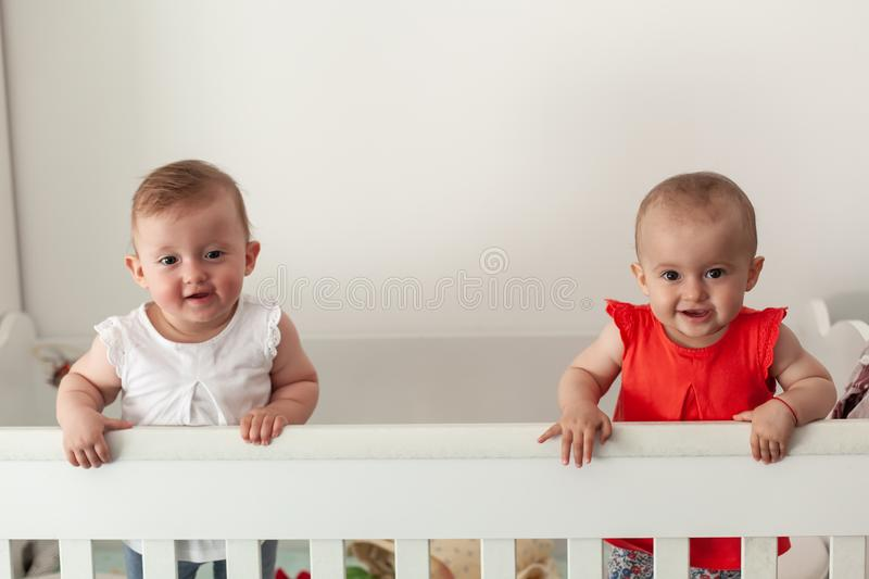 Happy fraternal twins sisters having fun, standing in crib. Happy baby. Baby emotions. Baby smile royalty free stock images