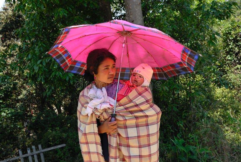 Frau in Assam-Indien lizenzfreie stockfotos