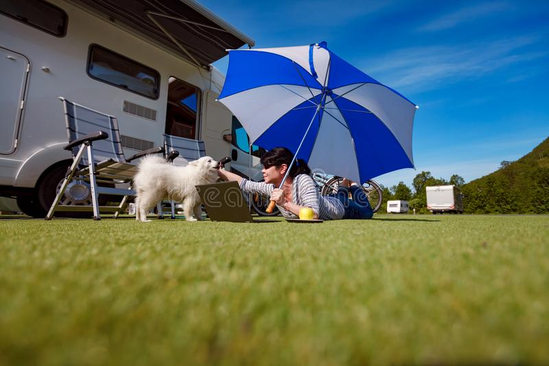 Frau auf dem Gras mit einem Hund, der einen Laptop betrachtet stockbild