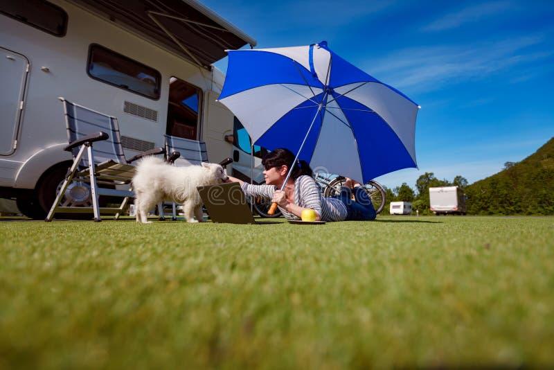 Frau auf dem Gras mit einem Hund, der einen Laptop betrachtet stockfoto