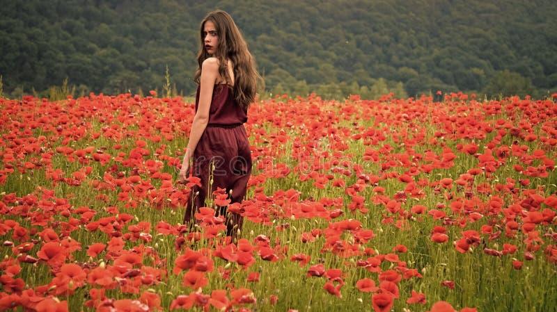 Frau auf dem Mohnblumenblumengebiet, Ernte Schönheitssommerfrühlings-Mohn Droge und Liebesintoxikation, Opium, medizinisch stockbild