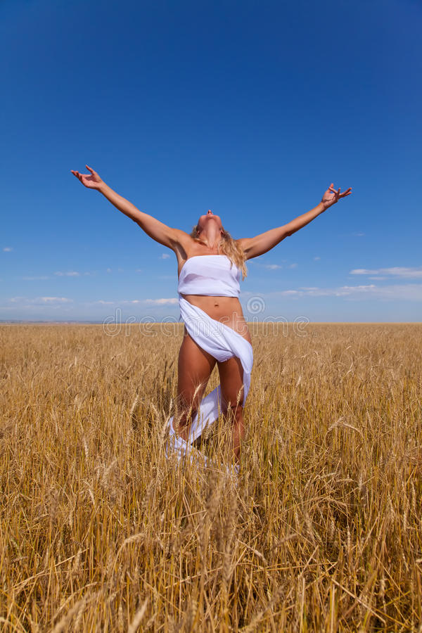 Frau auf dem Weizengebiet lizenzfreies stockbild