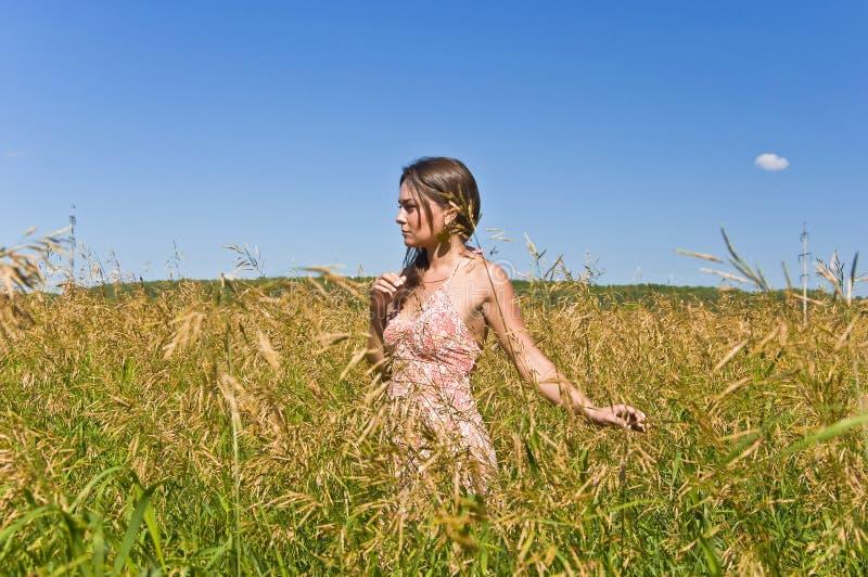 Frau auf einem Gebiet des Roggens stockfotografie