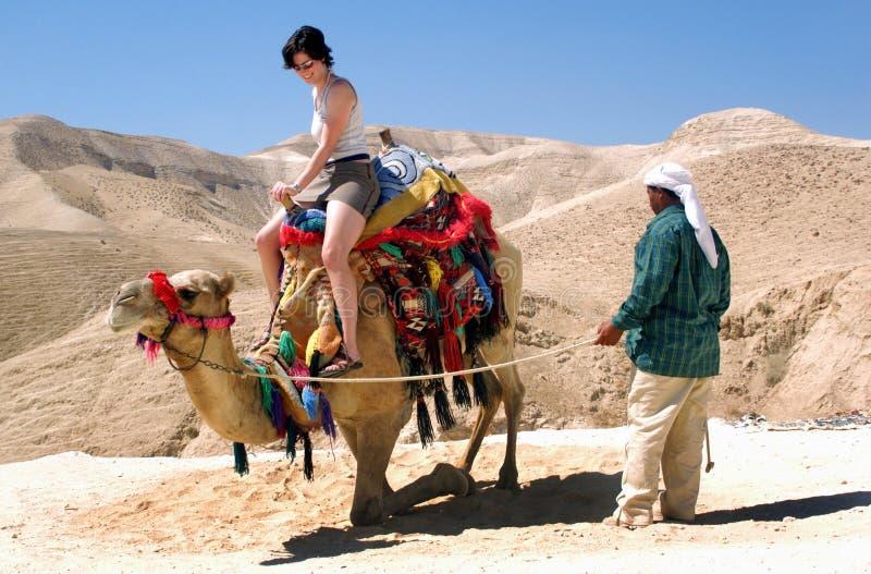 Frau auf einem Kamel in der Judaean Wüste stockbild