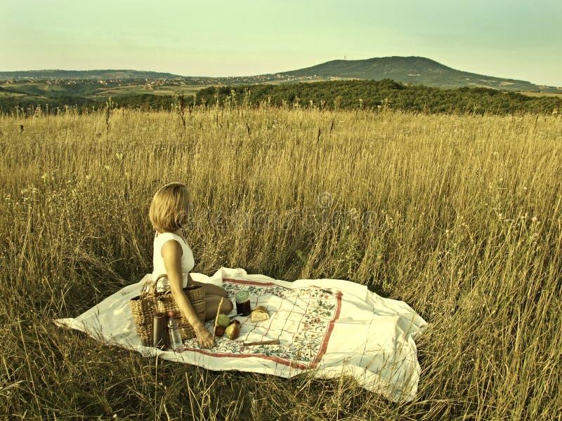 Frau auf einem Picknick auf dem Gebiet lizenzfreies stockbild