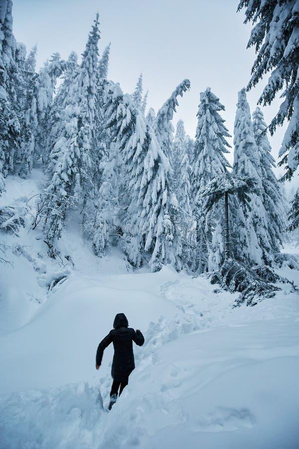 Frau auf einem schneebedeckten Weg stockbild