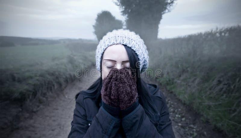 Frau auf Landweg stockbild