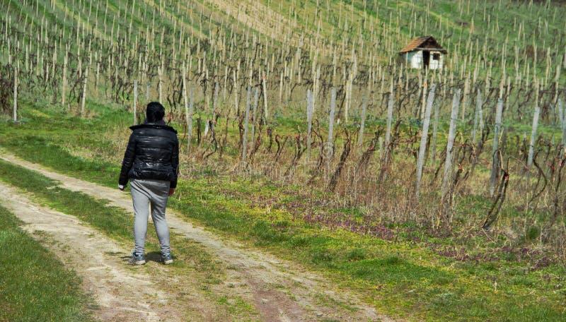 Frau auf Weg zu den Weinbergen lizenzfreie stockbilder