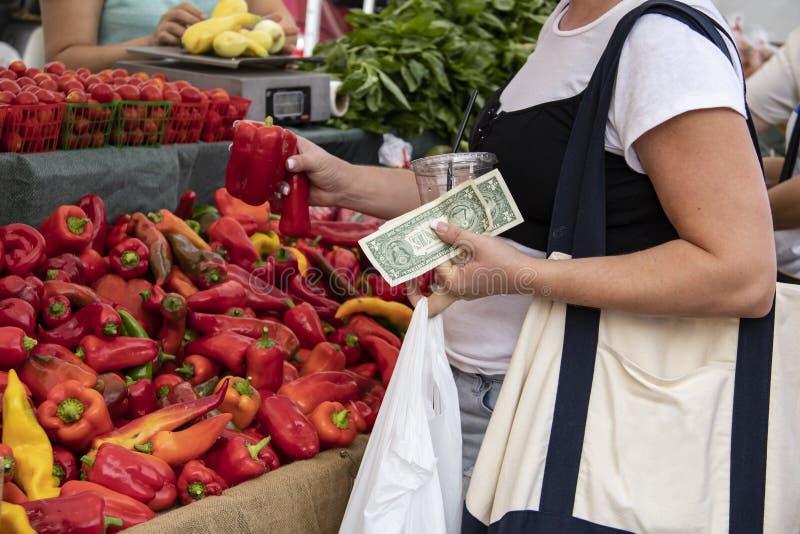 Frau an den Landwirten vermarkten das Halten von amerikanischen Dollar und von Getränk mit einem Plastikstroh und die Untersuchun lizenzfreie stockfotos