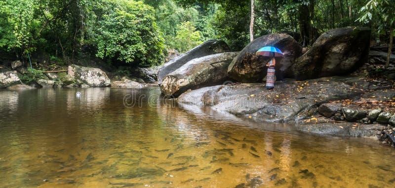 Frau in den Sarongen, die auf Flussfelsen stehen stockbilder