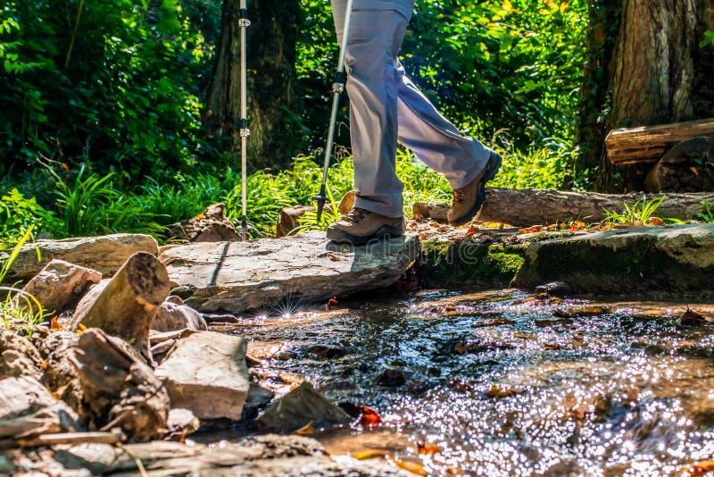 Frau des jungen Mädchens, die schoes und Stockdetailansicht in die Waldtätigkeit im Freien in der Natur wandert stockfotos