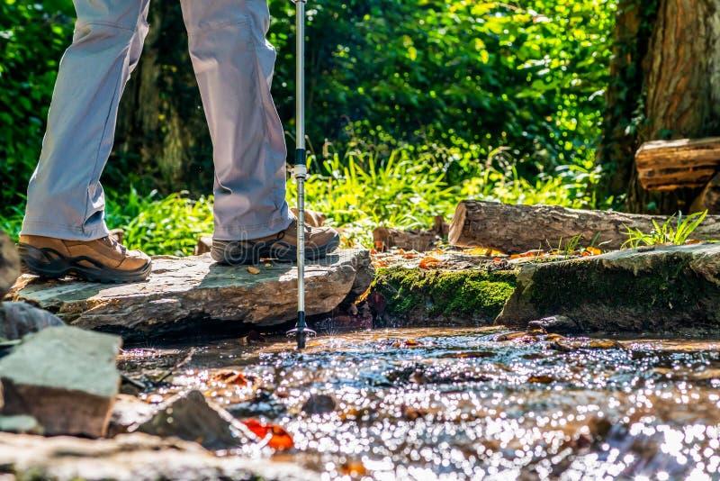 Frau des jungen Mädchens, die schoes und Stockdetailansicht in die Waldtätigkeit im Freien in der Natur wandert stockfoto