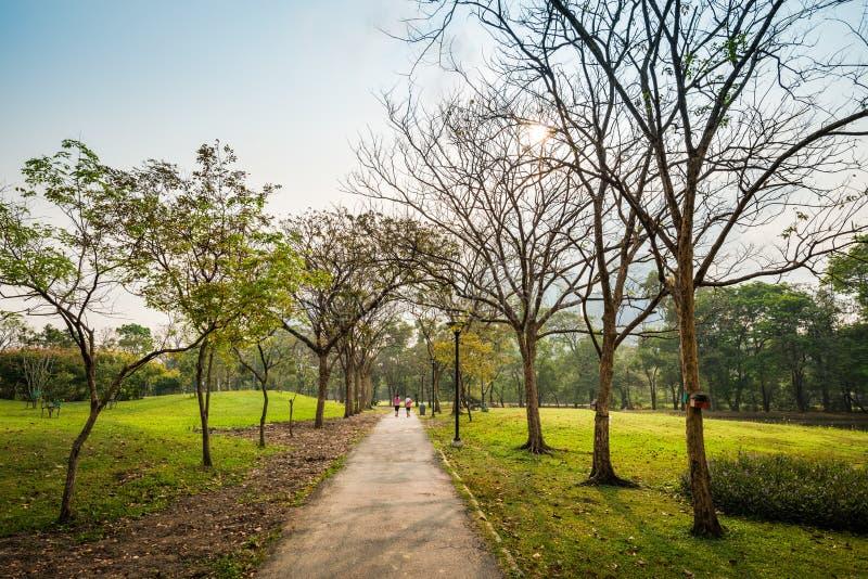 Frau, die öffentlich Park laufen lässt lizenzfreie stockfotografie