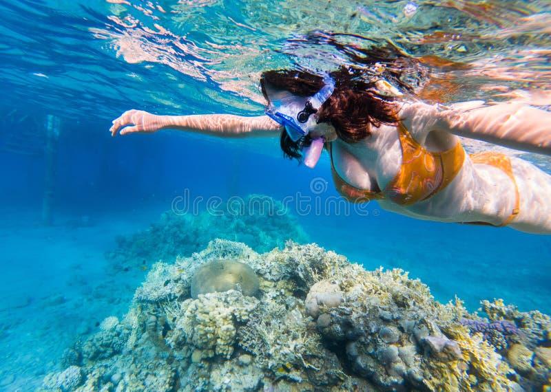 Frau, die über Korallenriff schnorchelt stockbild