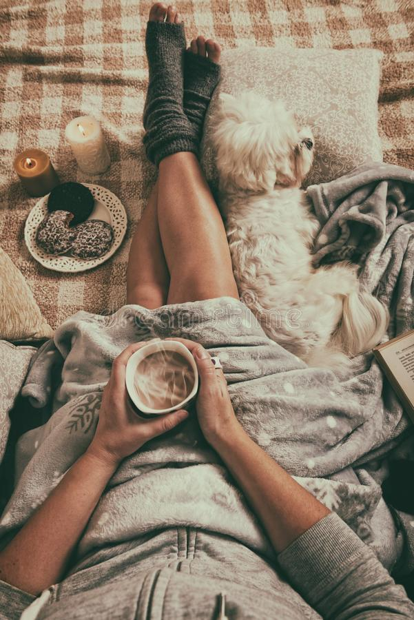 Frau, die auf Bett mit Hund liegt stockfotografie