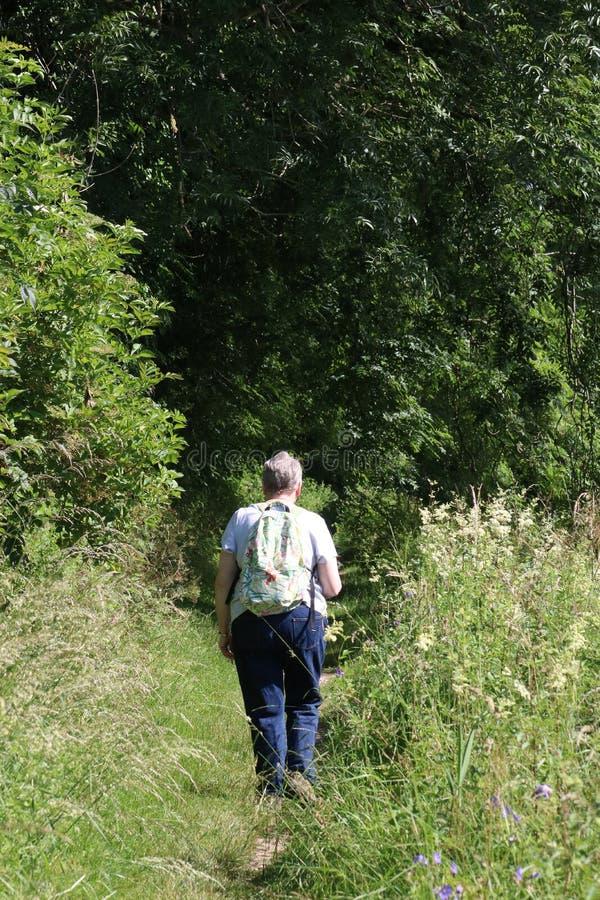 Frau, die auf Kanalleinpfad Cumbria-Landschaft geht stockbild