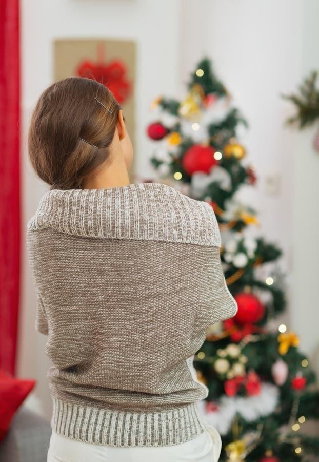 Download Frau, Die Auf Weihnachtsbaum Schaut. Hintere Ansicht Stockfoto - Bild von fröhlich, dekor: 27728104