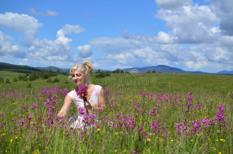 Frau, die Blumen auf Sommer-Wiese erfasst stockfotografie