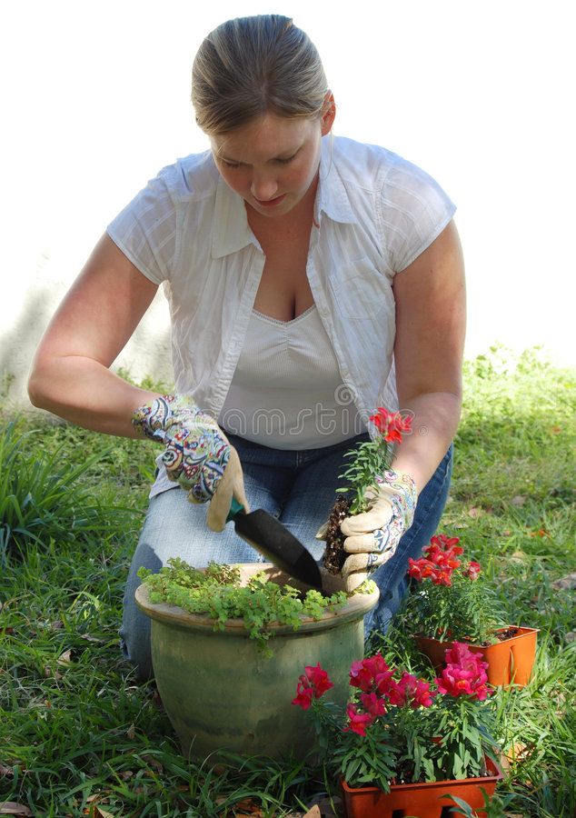 Frau, die Blumen pflanzt lizenzfreies stockbild