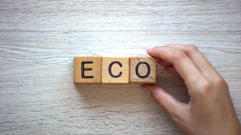 Frau, die eco Wort von den Würfeln, von den Waren und von den Dienstleistungen ohne Schaden zum Ökosystem macht stockbild