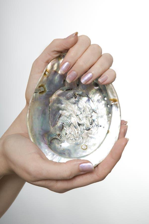Frau, die ein Austeren-Shell anhält stockfotografie