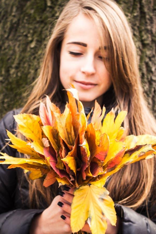Frau, die ein Bündel Herbstlaub hält stockbilder