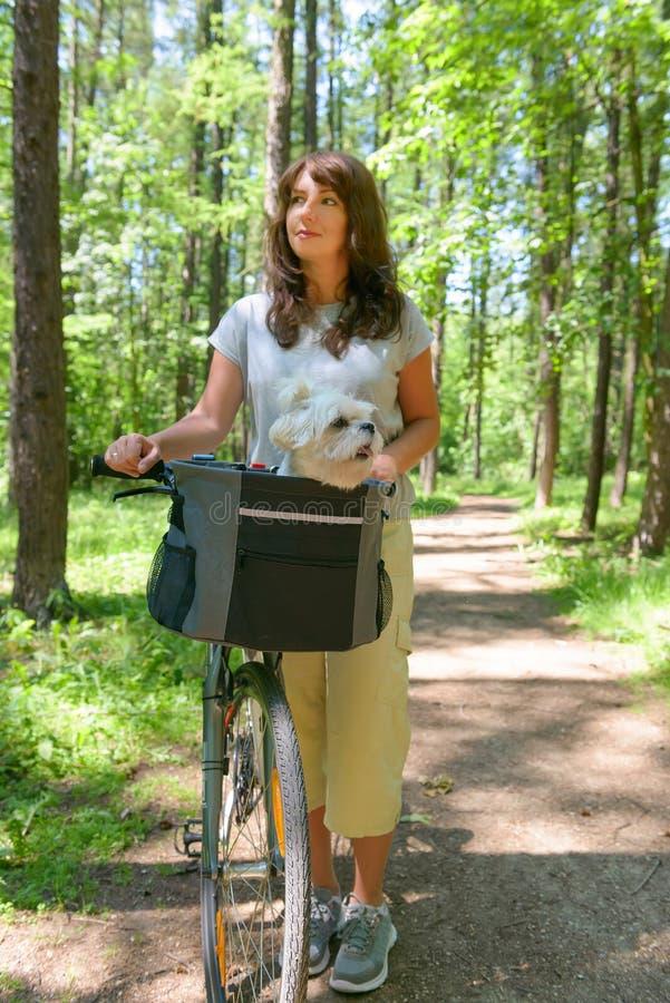 Frau, die ein Fahrrad mit ihrem Hund reitet lizenzfreie stockbilder