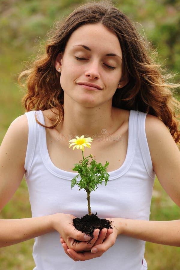 Frau, die eine Blume pflanzt stockbild
