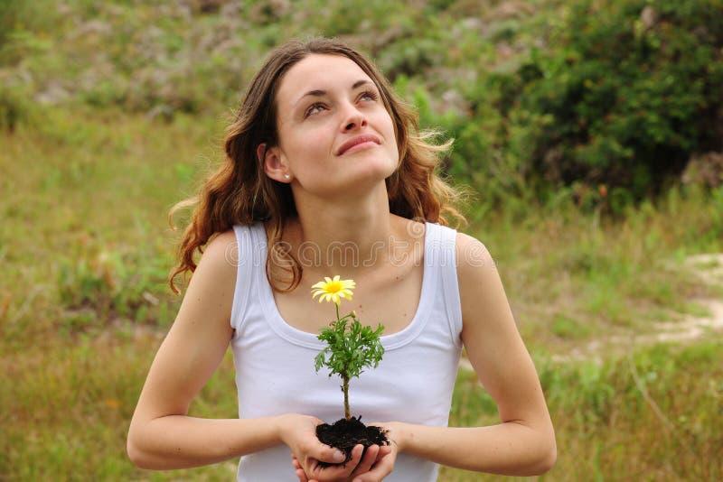 Frau, die eine Blume pflanzt stockfotografie