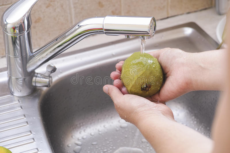 Frau, die eine Guave mit Wasser in der Wanne wäscht stockfotos