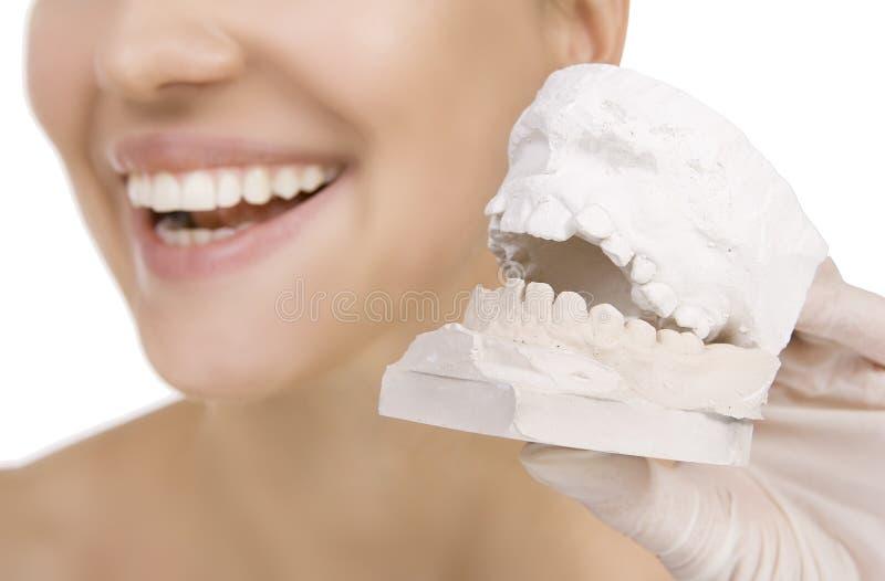 Frau, die eine Zahnprobe hält stockfotos
