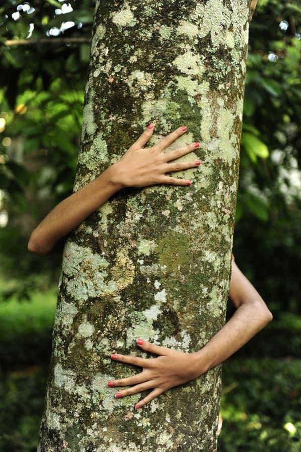 Frau, die einen Baum im Wald umarmt stockfoto