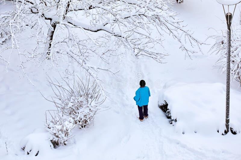 Frau, die einen blauen Mantel und schwarzen Wealstände in einem Park bedeckt mit Schnee im Winter trägt Ansicht von oben stockfotografie