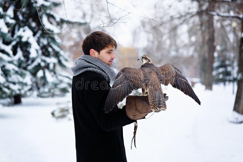Frau, die einen Falken hält stockbild