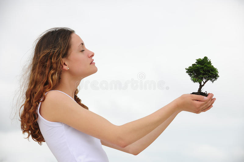 Frau, die einen kleinen Baum anhält lizenzfreie stockfotos