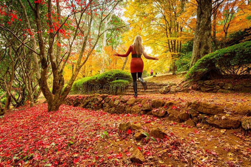 Frau, die einen Weg in einem Herbstgarten genießt stockbilder