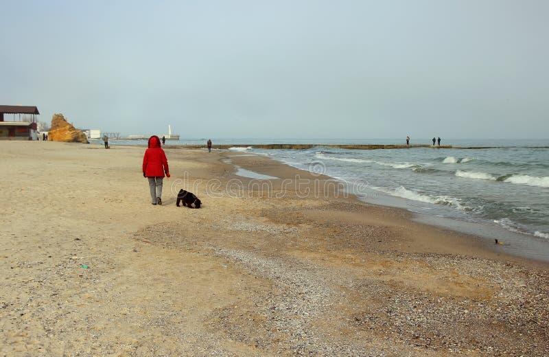 Frau, die entlang den Strand mit dem Hund schlendert lizenzfreies stockbild