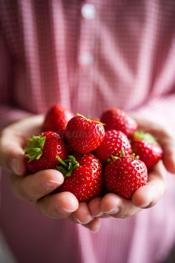 Frau, die Erdbeeren hält stockbilder