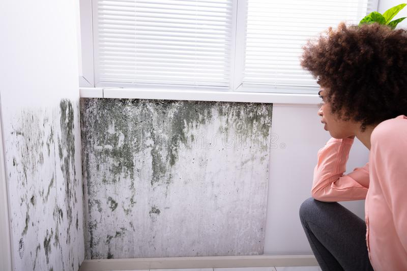 Frau, die Form auf Wand betrachtet stockfotos