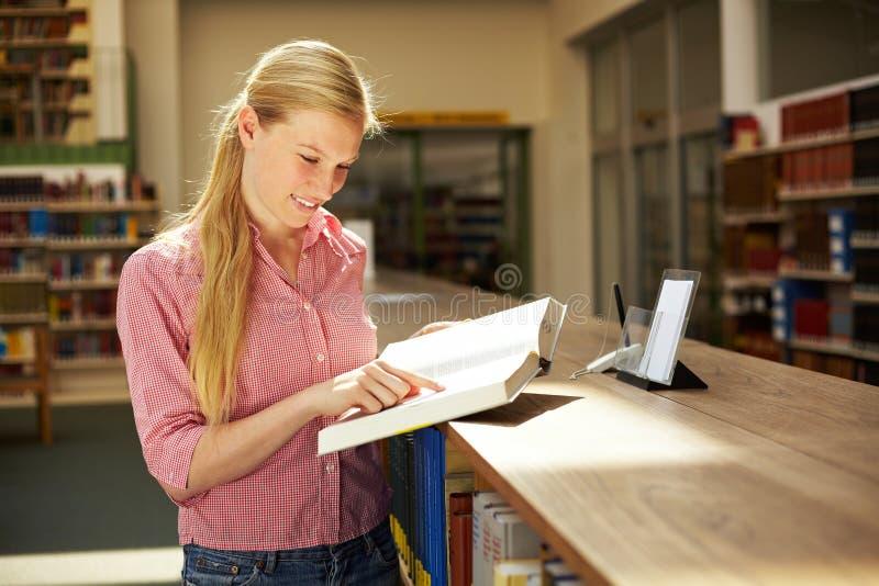 Frau, die Forschung tut lizenzfreie stockbilder
