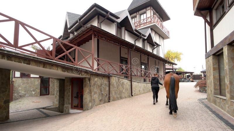 Frau, die ihr Pferd auf einem modernen Bauernhof geht stockfotos