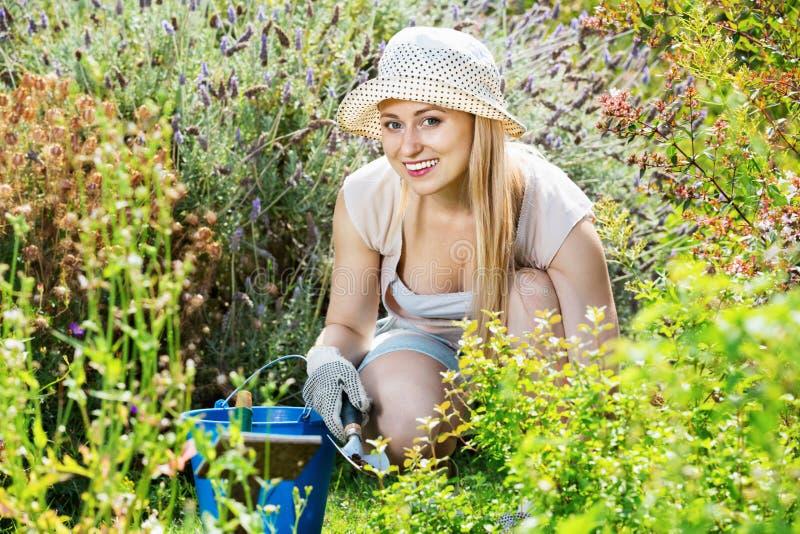 Frau, die im Garten unter Verwendung der Gartenbauinstrumente auf summe arbeitet stockfotos