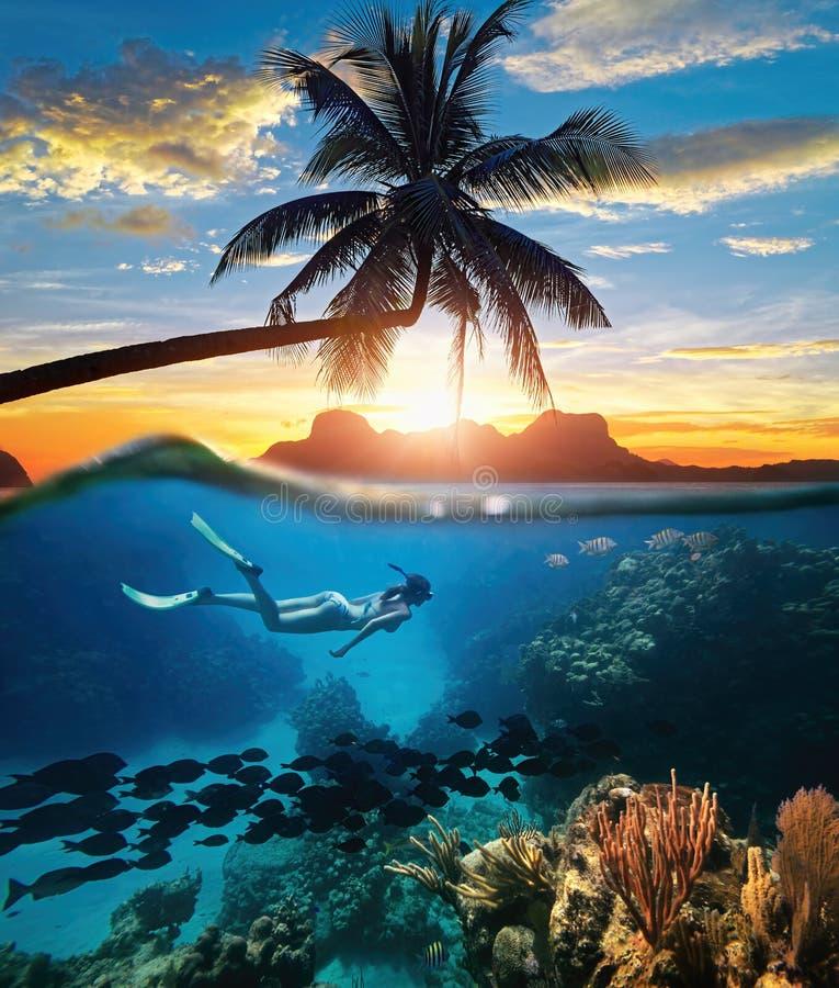 Frau, die im klaren tropischen Wasserozean am Sonnenuntergangtag schnorchelt stockfoto