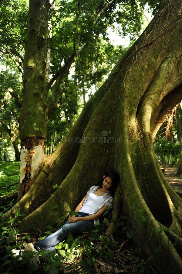 Frau, die im Schatten eines Baums schläft stockfotos