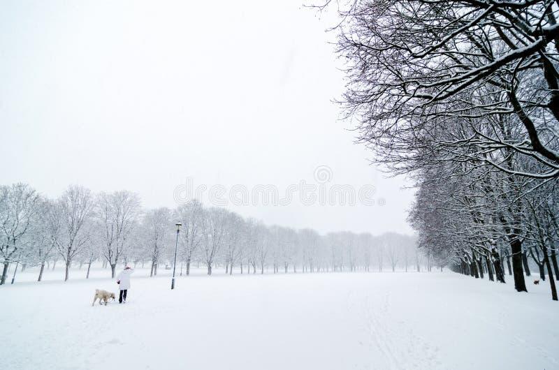 Frau, die mit einem Hund an einem kalten Tag während eines Schneefalles in Vigeland-Park, Oslo geht stockbilder