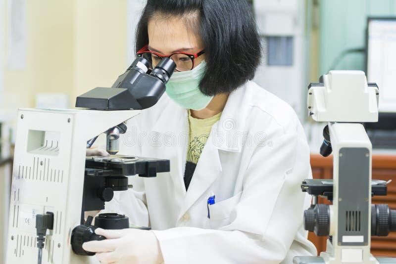 Frau, die mit einem Mikroskop im Labor arbeitet stockbild