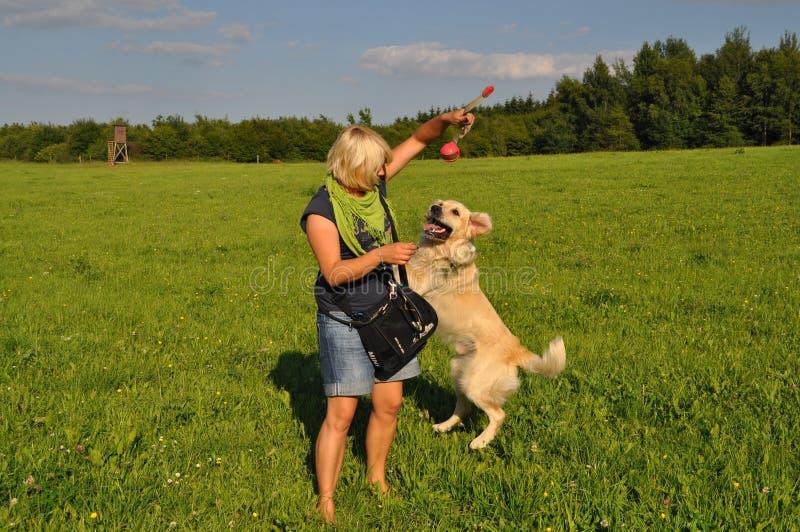 Hund Deckt Frau
