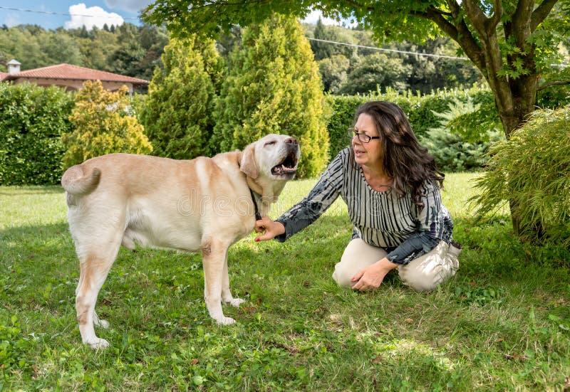 Frau, die mit ihrem Labrador-Hund spricht lizenzfreies stockbild